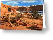 Corona Canyon Greeting Card