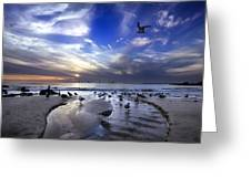 Corona Del Mar Greeting Card by Sean Foster