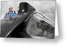 Coronation Mallard Greeting Card