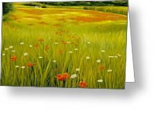 Cortona Poppies Greeting Card