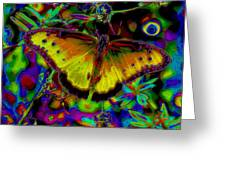 Cosmic Butterfly Greeting Card by Rebecca Flaig