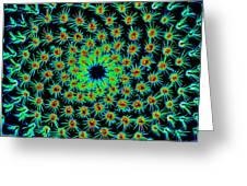 Cosmic Cacti In Spokane Greeting Card