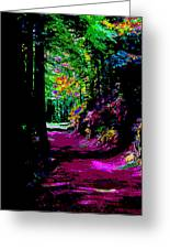 Cosmic Energy Of A Redwood Forest On Mt Tamalpais Greeting Card