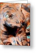Cosmic Kitty 3 Greeting Card