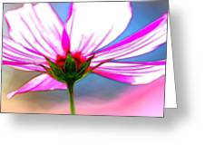 Cosmos Abstract In Ohara Greeting Card