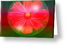 Cosmos Bubble Greeting Card