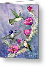 Costa Hummingbird Family Greeting Card