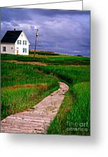 Cottage Among The Dunes Greeting Card by Edward Fielding