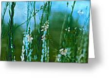 Cottage Garden Three Greeting Card
