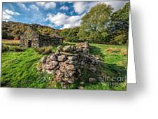 Cottage Ruin Greeting Card by Adrian Evans