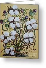 Cotton #2 - Cotton Bolls Greeting Card