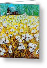 Cotton Fields Back Home Greeting Card by Eloise Schneider