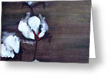 Cotton In Red 2 Greeting Card