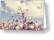 Cotton In The Sky With Filter Greeting Card
