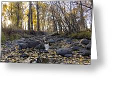 Cottonwood Creek Near Deer Lodge Montana Greeting Card