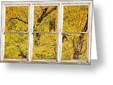 Cottonwood Fall Foliage Colors Rustic Farm Window View Greeting Card
