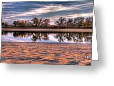 Cottonwoods At Barr Lake Greeting Card