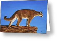 Cougar Cliff Greeting Card