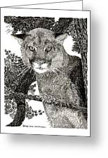 Cougar From Colorado Greeting Card