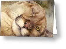 Cougar    I See You     Greeting Card