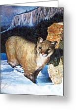 Cougar In Snow Greeting Card