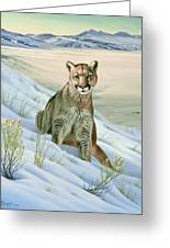 'cougar In Snow' Greeting Card