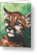 Cougar Prince Greeting Card
