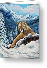 Cougar Sedona Red Rocks  Greeting Card