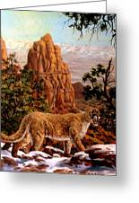 Cougar Greeting Card by W  Scott Fenton