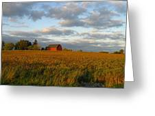 Country Backroad Greeting Card