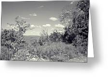 Country Beyond Greeting Card