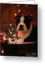 Country Christmas Puppy Greeting Card