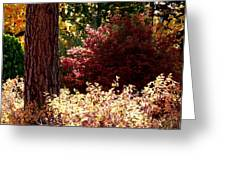 Country Color 28 Greeting Card