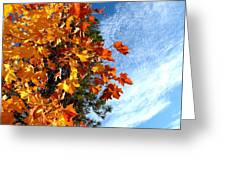 Country Color 30 Greeting Card