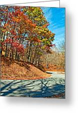 Country Curves And Vultures Greeting Card