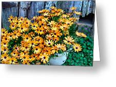 Country Floral Greeting Card