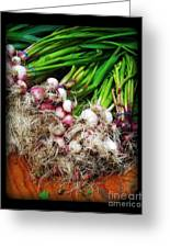 Country Kitchen - Onions Greeting Card