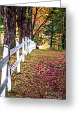 Country Lane Fall Foliage Vermont Greeting Card