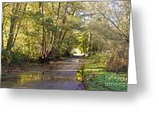 Country Lane In Autumn 3 Greeting Card
