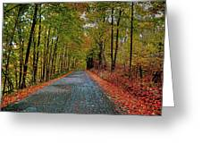 Country Lane In Autumn Greeting Card