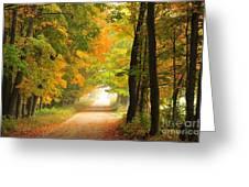 Country Road In Autumn Greeting Card by Terri Gostola