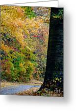 Country Road In Tennessee Greeting Card