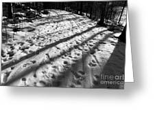 Country Road With Melting Snow In Early Spring Greeting Card