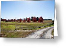 Country Roads Greeting Card by Jinx Farmer