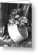 Country Summer - Bw 02 Greeting Card