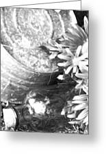 Country Summer - Bw 05 Greeting Card