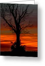 Country Sunsets Greeting Card