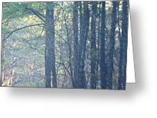 Country Woodlands Greeting Card