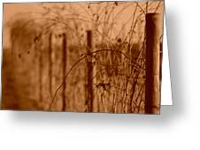 Countryside Fence Greeting Card