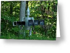 Countryside Mailbox #11 Greeting Card